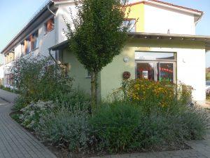 Eine Ansicht der Schule von Vorne, Beete mit herbstlichen Blumen